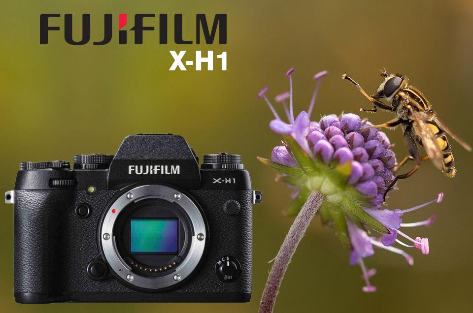fujifilm x-h1 preview