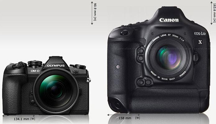 Olympus OM-D E-M1X vs Canon EOS 1D